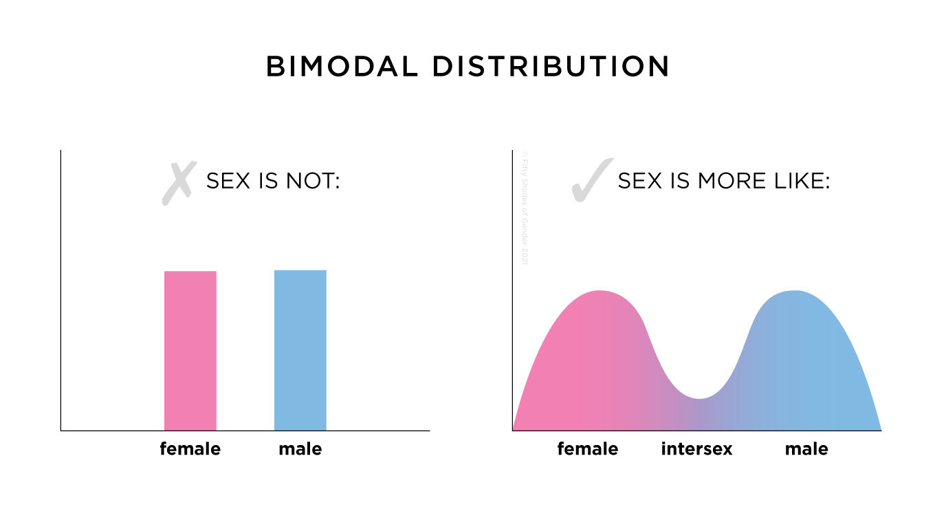 Example of bimodal distribution. On the left, a bar graph with 2 bars, representing female and male. On the right, a wavy chart with 2 peaks left and right and a valley in the middle, which represents intersex variations.